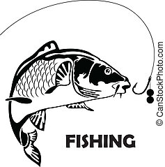 carp fish and bait - carp fish, vector illustration