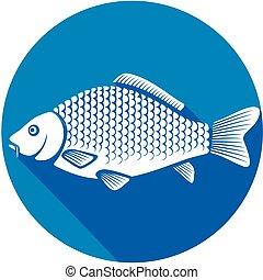 carp fish flat icon (common carp)