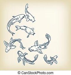 carp koi vector illustration set sketch design elements
