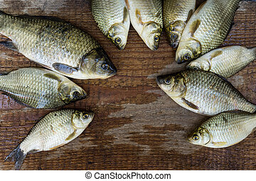 carp on a wooden background