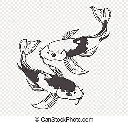 carp sketch on transparent background. Freehand japanese carp tattoo, vector illustration
