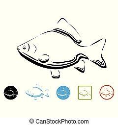Carp - vector illustration