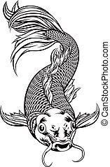 carpa de koi, pez