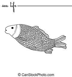 carpa, illustration., drawing., garabato, blanco, mano, vector, mar negro, life., dibujado, contornos, original