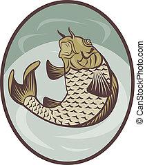 Carpa koi illustrazione clipart cerca illustrazioni for Carpa koi prezzo