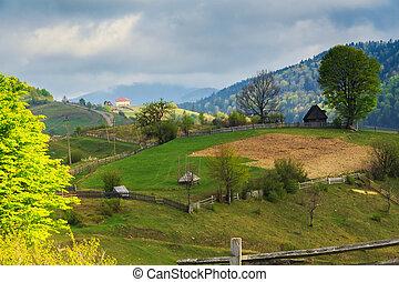 carpathian, כפרי, הרים, נוף, קפוץ