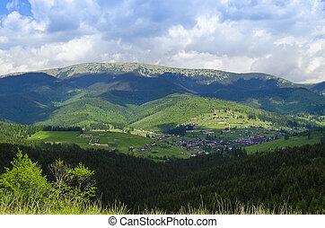 carpathian, berge, in, sommer