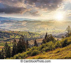 carpathian, bjerg, solnedgang, sommer, klassisk, landskab