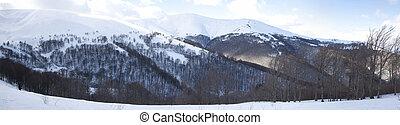 carpathian, hegy, parkosít., panoráma, közül, hó, mountain.