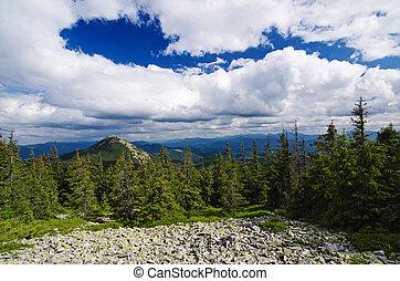 Carpathian mountain landscape - Carpathian mountains summer...