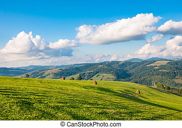 Carpathian mountain landscape with blue cloudy sky in summer day