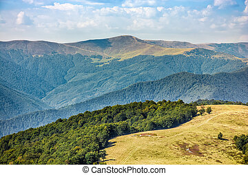 Carpathian Mountain Range in late summer - Polonyna Krasna...