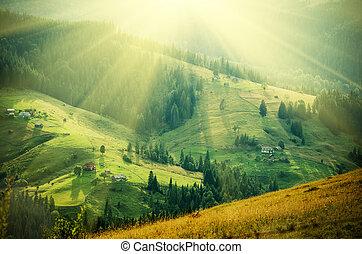 Carpathian mountain sunny landscape - Carpathian mountains...