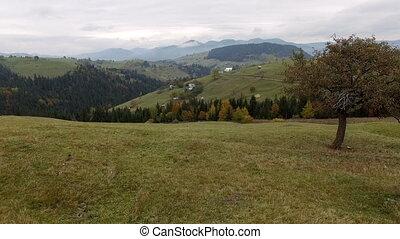 Carpathian Mountains Aerial