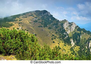 carpathian, mountains