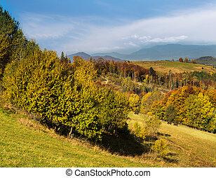 Carpathian Mountains in autumn.