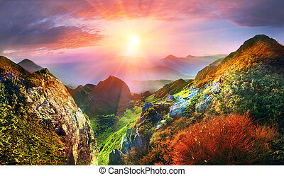 Carpathian Summer is the warmest and beautiful time of year, the abundance of flowers, clear lakes, lush alpine meadows of grass, fresh air attract people from cities