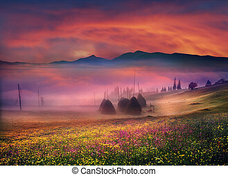 Carpathian Summer is the warmest and beautiful time of year, the abundance of flowers, clear lakes, lush alpine meadows of grass, fresh air attract people from cities. Sunset in the mountainous terrain is perfect