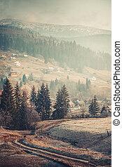 Carpathian Village and mountains