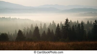 Carpathians in the early summer morning. Time lapse