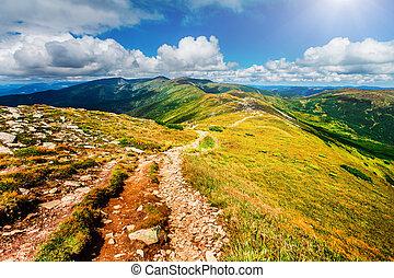 carpathians, montagna, ukraine., percorso
