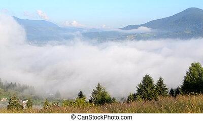 carpathians., montagnes, mouvements, dissipates, matin, brouillard