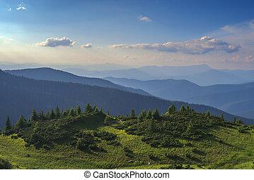 mountain - Carpathians mountain in summer time