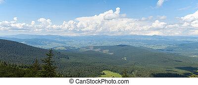 Carpathians mountains at summer, west Ukraine. Nature...
