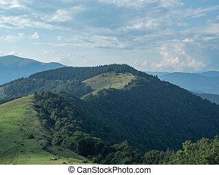 Carpathians mountains, west Ukraine. Mountain pasture...