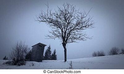 carpathians, paysage hiver