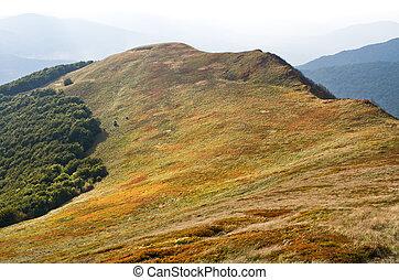 carpathians, pic, vue
