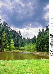 carpatian, montanhas, lago pequeno, profundo
