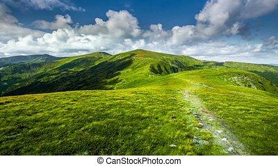 Carpatian summer landscape. 4k, 25fps - Summer landscape....
