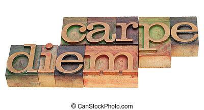 carpe diem in letterpress type - Enjoy life before it is too...