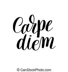 carpe, diem, mão escrita, lettering, positivo, citação,...
