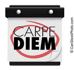 Carpe Diem Sieze the Day Wall Calendar Page 3d Illustration