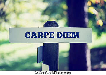 Carpe Diem - Old rustic signpost with the phrase Carpe Diem,...