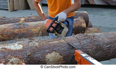 Carpenter cutting wood with motorized professional chainsaw. Sound of cutting timber