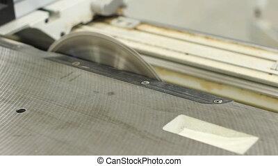 saw - Carpenter working with circular blade saw, splitting...