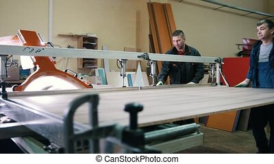 Carpenters are cutting wood on electric saw at furniture...
