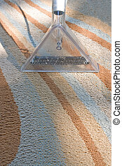 Carpet Cleaning - A carpet cleaner in action on a...