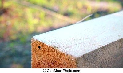 carrée, bois, marque, faisceau, utilisé, encadrement