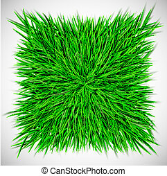 carrée, herbe, fond