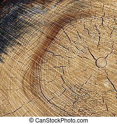 carrée, vieux, couleur, cadre, haut, texture, naturel, grain bois, fin