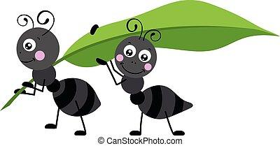 carregar, dois, verde, formigas, folha