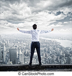 carreira, homem negócios, topo, sucesso, negócio