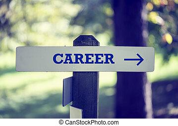 carreira, signpost, com, direita, apontando seta