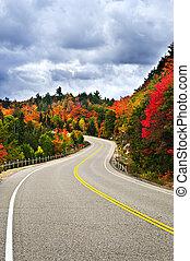 carretera, otoño
