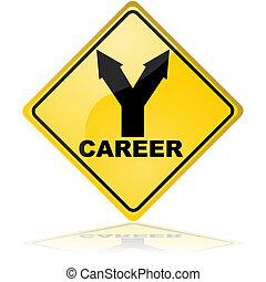 carrière, choix