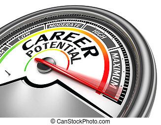 carrière, conceptueel, potentieel, meter